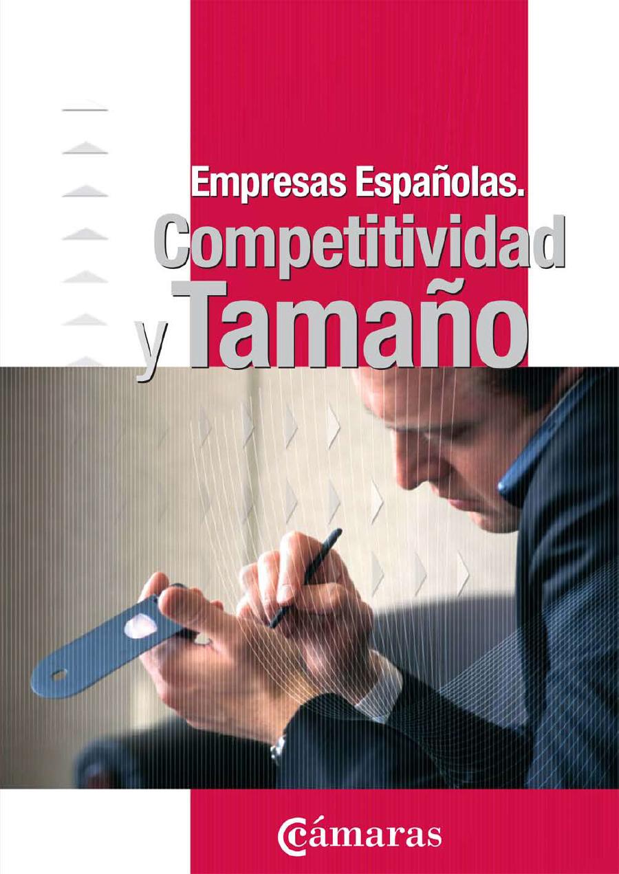 Competitividad y Tamaño Empresarial