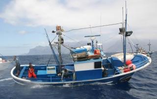 Un análisis de la sostenibilidad social del sector pesquero español a través del empleo